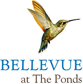Bellevue at The Ponds